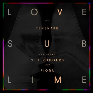 Tensnake feat. Nile Rodgers - Love Sublime (Cover)
